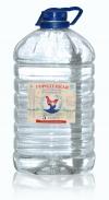"""Питьевая вода """"Городецкая настоящая"""" 5 литров йодированная"""